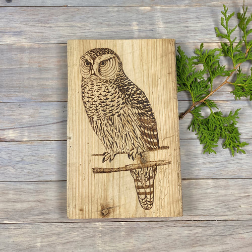 Owl Sign | Wood Burned | Barn Board