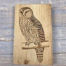 Load image into Gallery viewer, Owl Sign | Wood Burned | Barn Board