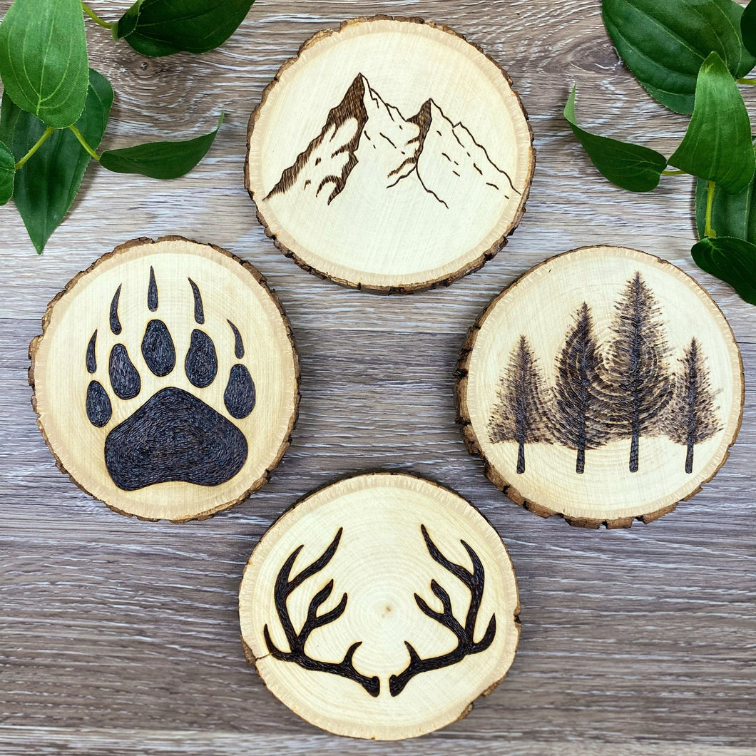 Wild Coasters - Set of 4