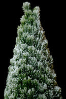 Artificial Christmas Snow Flaked Christmas Tree with Snow Flocked Round Base