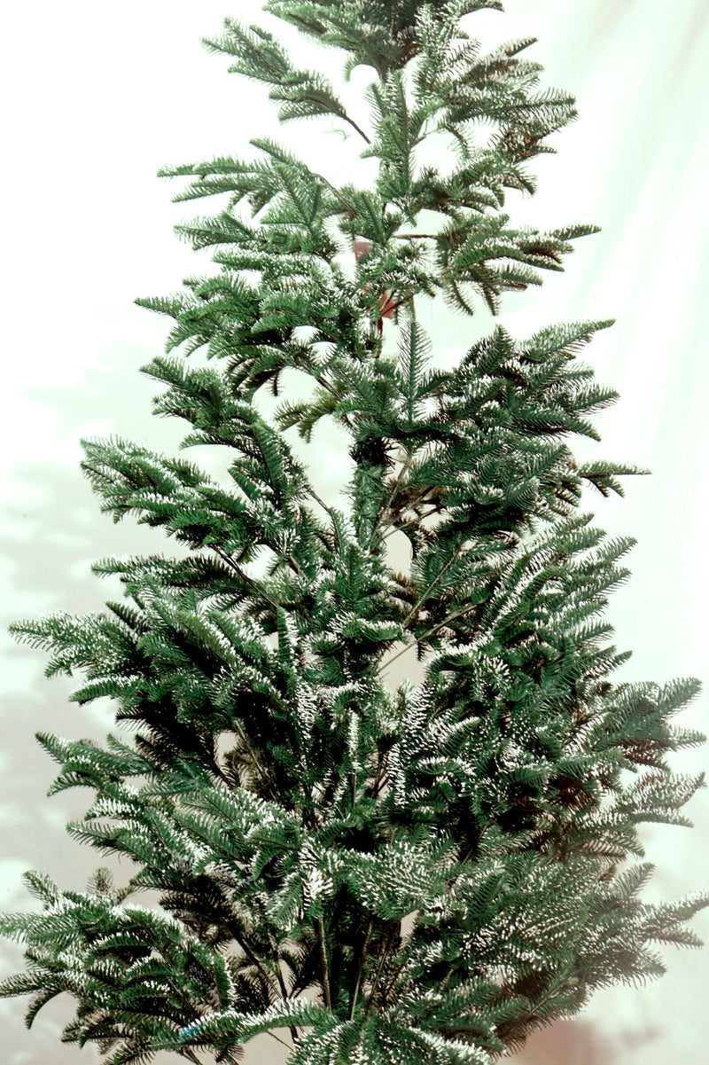 Snow Tipped Christmas Tree (5 feet and 7 feet)