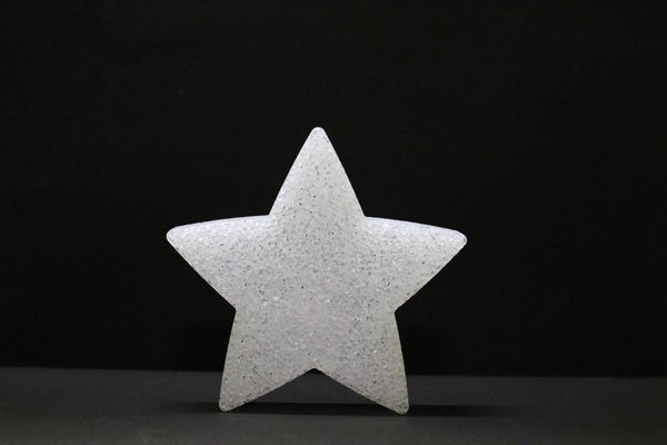 LED Christmas Acrylic Star