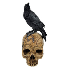 Load image into Gallery viewer, Box crow skull
