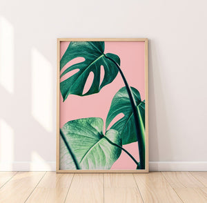 Palm Leaf Digital Wall Print II - Salt&Printer