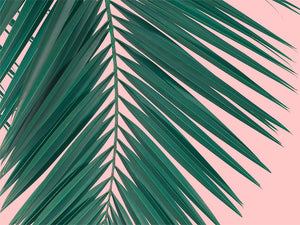 Palm Leaf Digital Wall Print - Salt&Printer