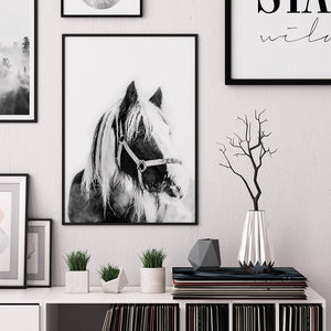 Horse Digital Wall Print II - Salt&Printer