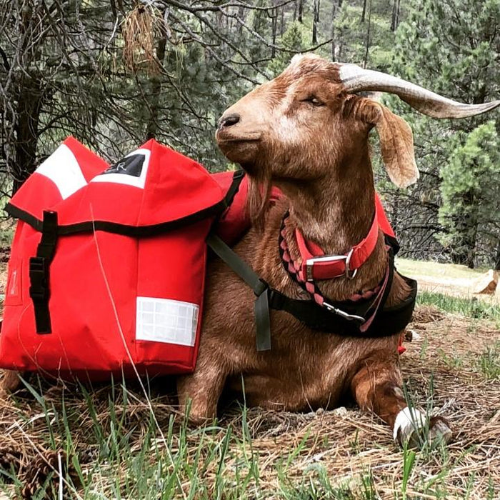 British Royal Mail Courier / Messenger Bag Goat Mount