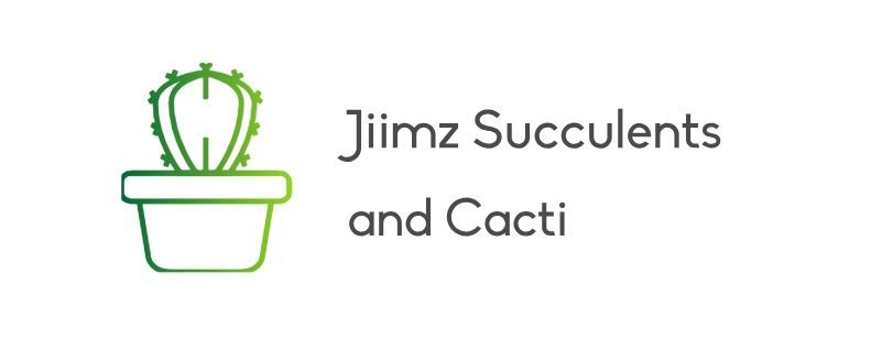 JIIMZ: SUCCULENTS AND CACTI