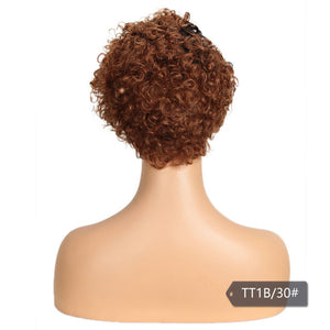 Curly Lace Front Wig Colored Short Curly Human Hair Wigs For Black Women Ombre Blond Brown Jerry Curl Lace Part Wig