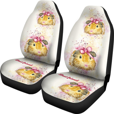 Guinea Pig Car Seat Covers Jan30DL
