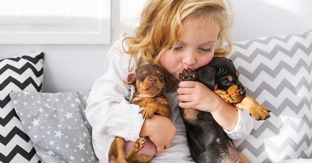 Are Dachshunds Good With Kids?