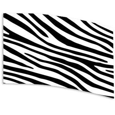 Zebra Stripes - Motion In Ink