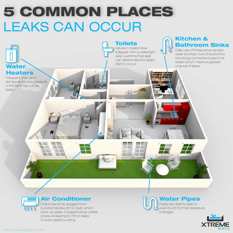 5 common places leaks occur infographic