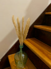 Load image into Gallery viewer, Mini Pampas Grass in Aqua Jug Vase