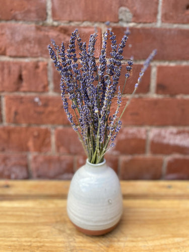 Dried Lavender Bunch in Two-Tone Budvase