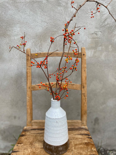 Dried Bittersweet Branches in Ceramic Budvase