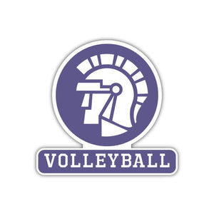 Volleyball Decal - M12
