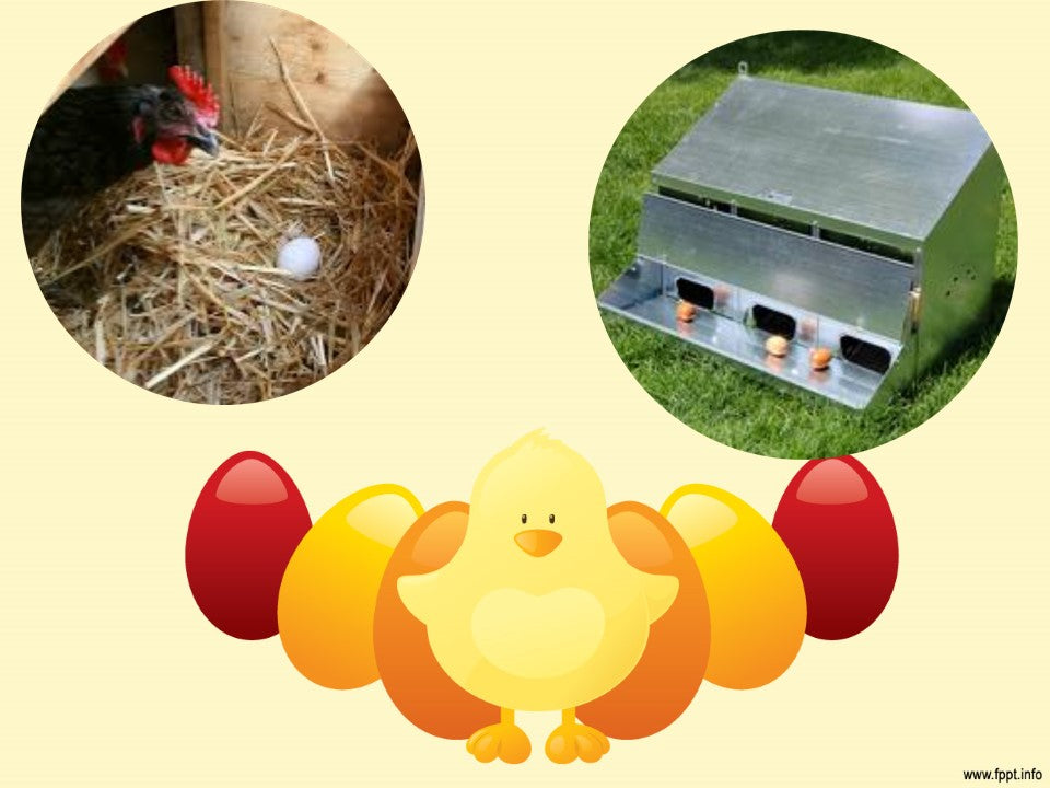 Comparison between wood and metal roll out nest boxes