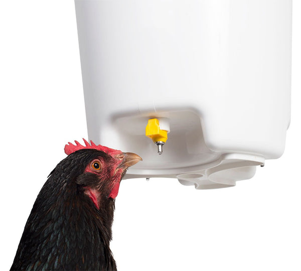 Hanging Drinker | 3 Gallons - Urban-Egg - Poultry Roll Away Nest Boxes, Chicken Feeders, and More