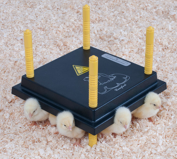 PRE-ORDER: Comfort Heat Plate for Chicks - Urban-Egg - Poultry Roll Away Nest Boxes, Chicken Feeders, and More