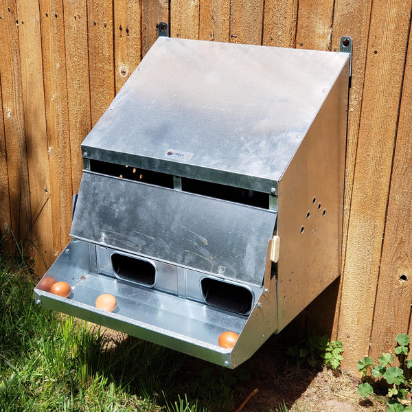 2-Hole Rollaway Chicken Nest Box - Roll Away Egg Collection - Urban-Egg - Poultry Roll Away Nest Boxes, Chicken Feeders, and More