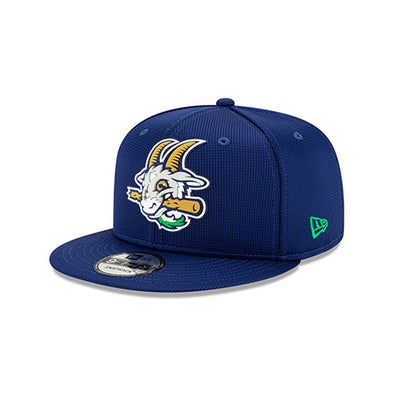 Hartford Yard Goats New Era Clubhouse Snap Back with Silicone Logo