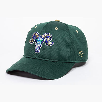 Hartford Yard Goats OC Sports Los Chivos Green Adjustable Cap