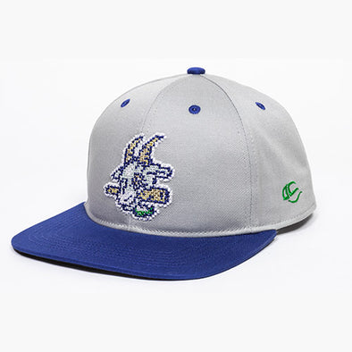Hartford Yard Goats OC Sports Yth Digital Snap Back in Grey / Blue