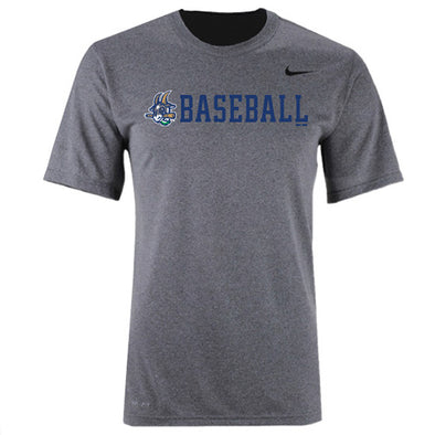 Hartford Yard Goats Nike Youth Dri-Fit in Grey