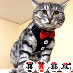 Elegant Cat Harness Vest with Leash Bowtie