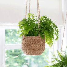 Hanging Plant Pot Set