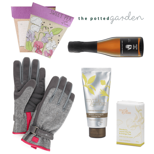 Sparkling in the Garden - The Perfect Birthday Gift Hamper