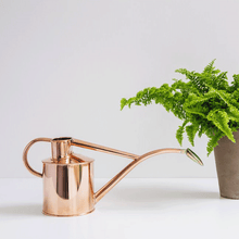 Watering Can - Metal Indoor 1Litre - Copper