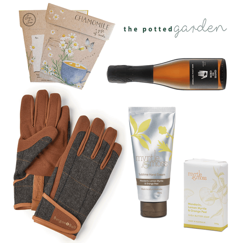 Sparkling in the Garden - The Perfect Gift Hamper for Him