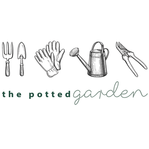 Potted Garden Gift Vouchers