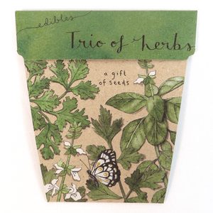 Trio of Herbs - Gift of Seeds | Seeds | Plant Gifts | The Potted Garden