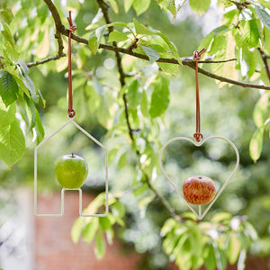 House Bird Feeder | Bird Feeder | Plant Gifts | The Potted Garden