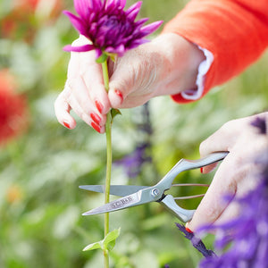 Sophie Conran - Precision Secateurs | Cutting Tools | Plant Gifts | The Potted Garden