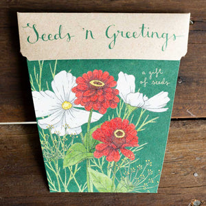 Seeds 'n Greetings Christmas Card Gift Set of 4 | Seeds | Plant Gifts | The Potted Garden