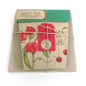 Sweet Peas Christmas Card Gift Set of 4 | Seeds | Plant Gifts | The Potted Garden