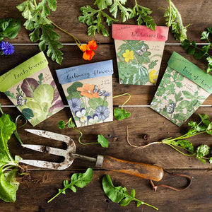 Edibles Seed Gift Set of 4 | Seeds | Plant Gifts | The Potted Garden