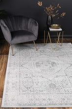 Load image into Gallery viewer, Isaiah Grey Traditional Rug freeshipping - Rug Empire