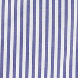 Blue university stripe