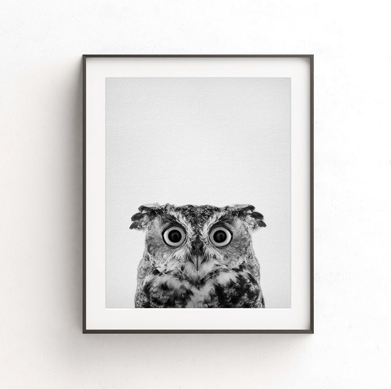 owl nursery print black white photo animal art