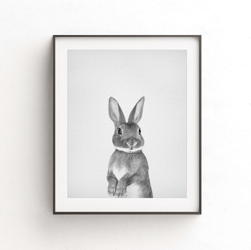 rabbit print nursery decor black white photo animal art