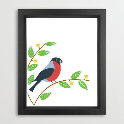 Bullfinch Bird Art