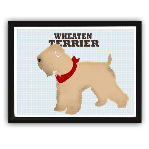 Wheaten Terrier Dog Art Print