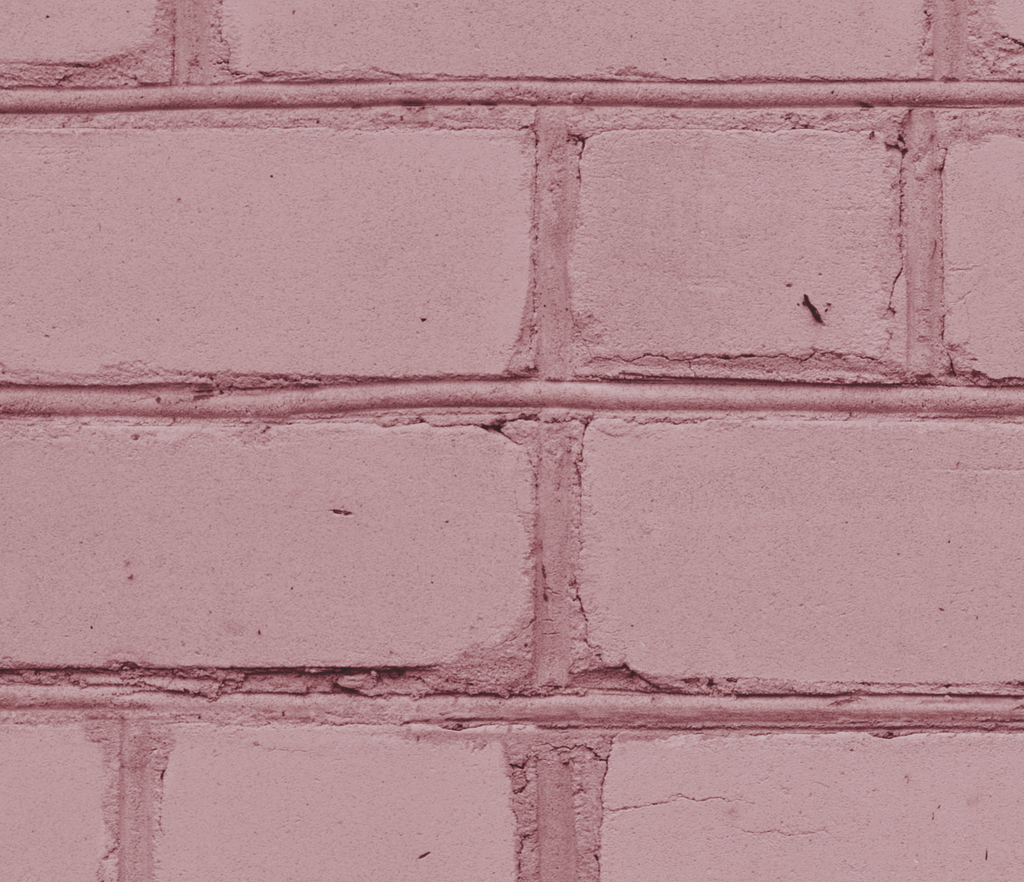Think Pink - WALL BLUSH