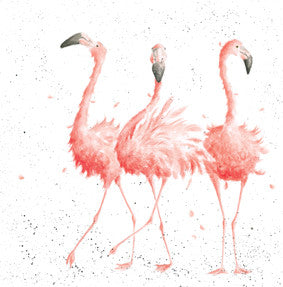 Wrendale Card - Flamingoes