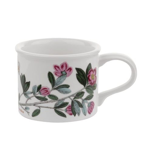 Botanic Garden Mocha Coffee Cup (D) Drum Shape